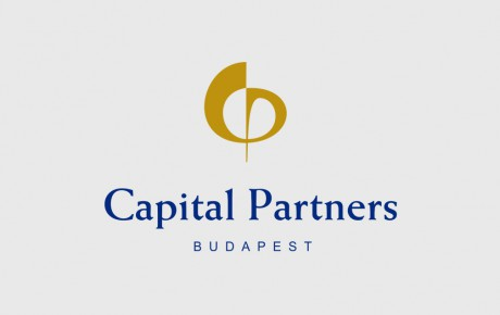 logo-design-radex-capital-partners
